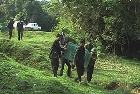 Bảo tồn đa dạng sinh học Vườn Quốc gia Vũ Quang Vũ Quang với đa dạng thành phần loài và đa dạng hệ sinh thái