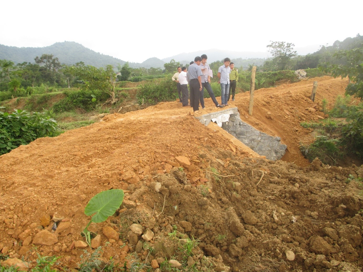 Phát triển sinh kế tại khu vực vùng đệm Vườn Quốc gia Vũ Quang.