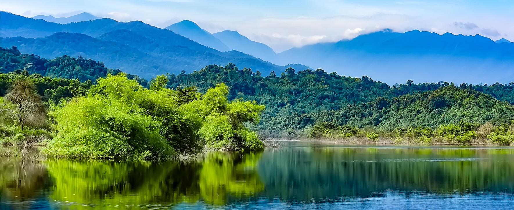 rừng núi VQ