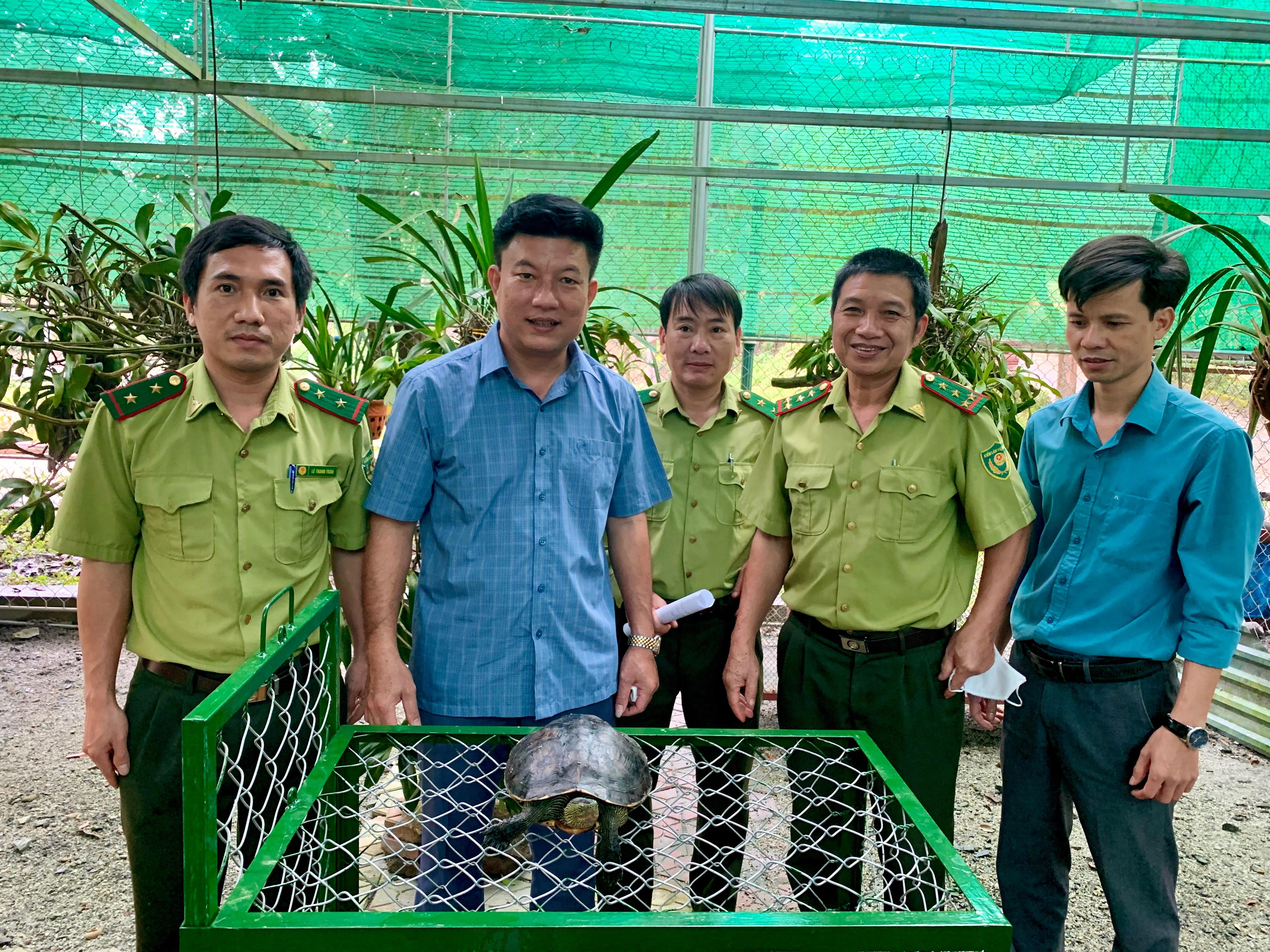 Vườn Quốc gia Vũ Quang tiếp nhận 2 cá thể động vật hoang dã quý hiếm