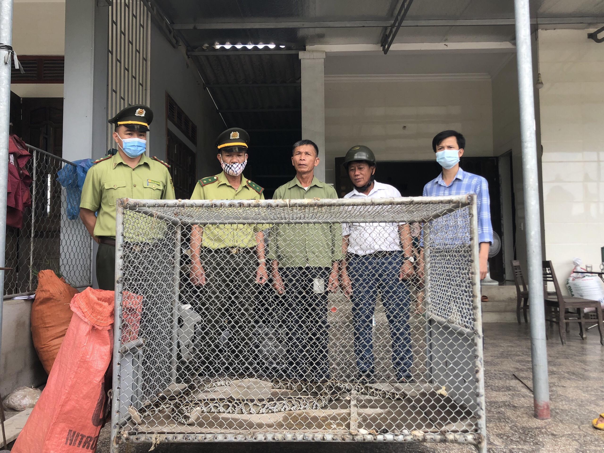 Hai cá thể trăn đất được bàn giao cho Vườn Quốc gia Vũ Quang