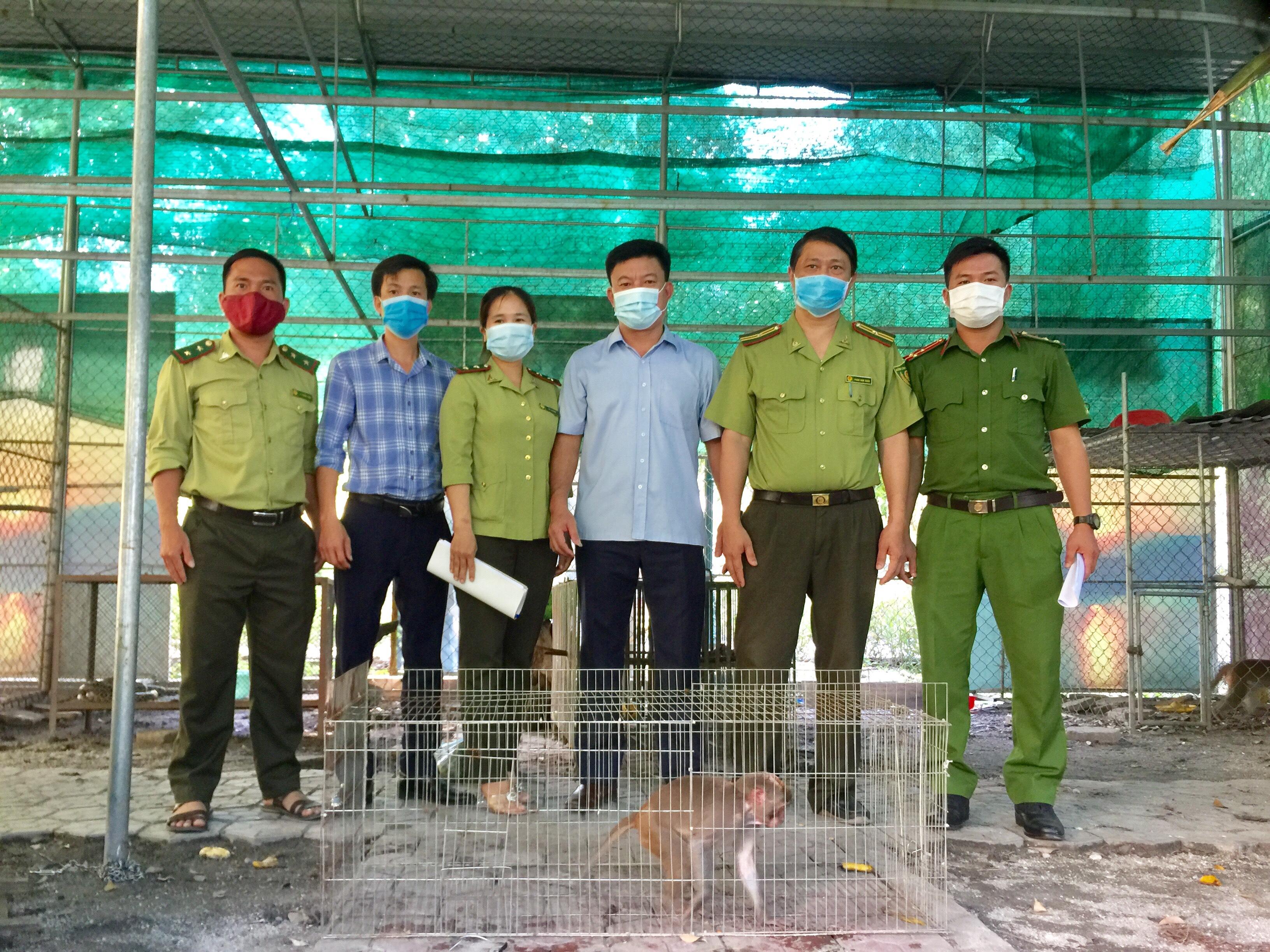 Vườn Quốc gia Vũ Quang tiếp nhận 1 cá thể động vật hoang dã quý, hiếm từ Hạt kiểm lâm Can Lộc để chăm sóc, cứu hộ.