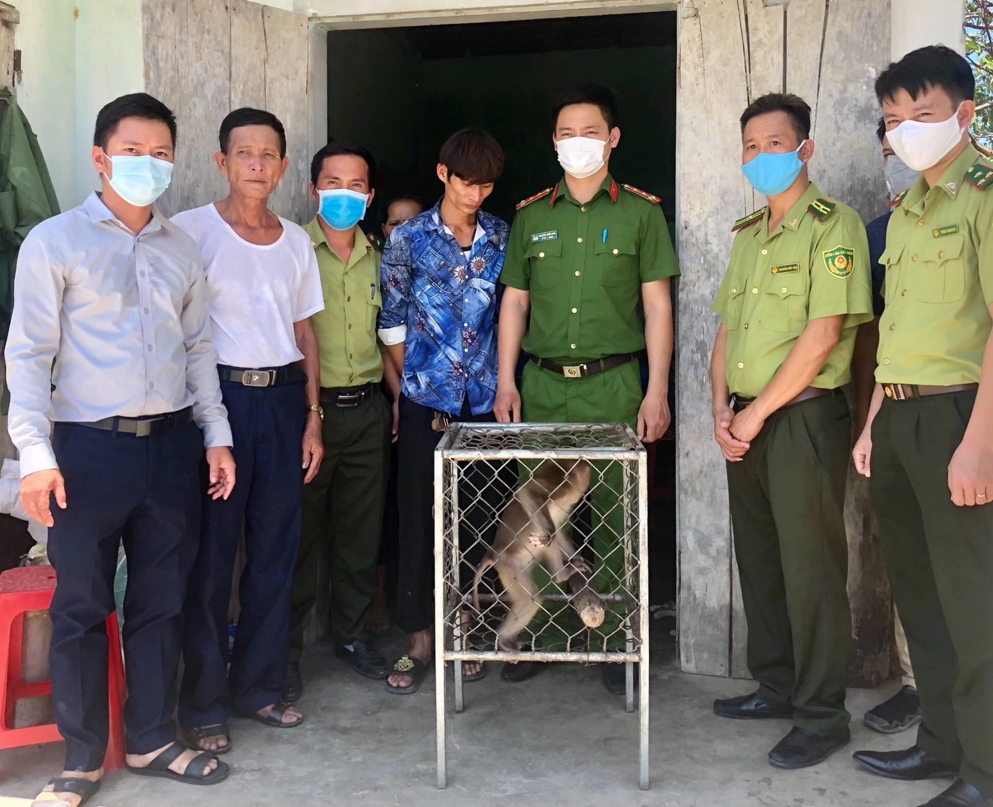 Một cá thể động vật hoang dã quý hiếm được bàn giao cho Vườn Quốc gia Vũ Quang