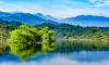 Vườn Quốc gia Vũ Quang đón nhận danh hiệu